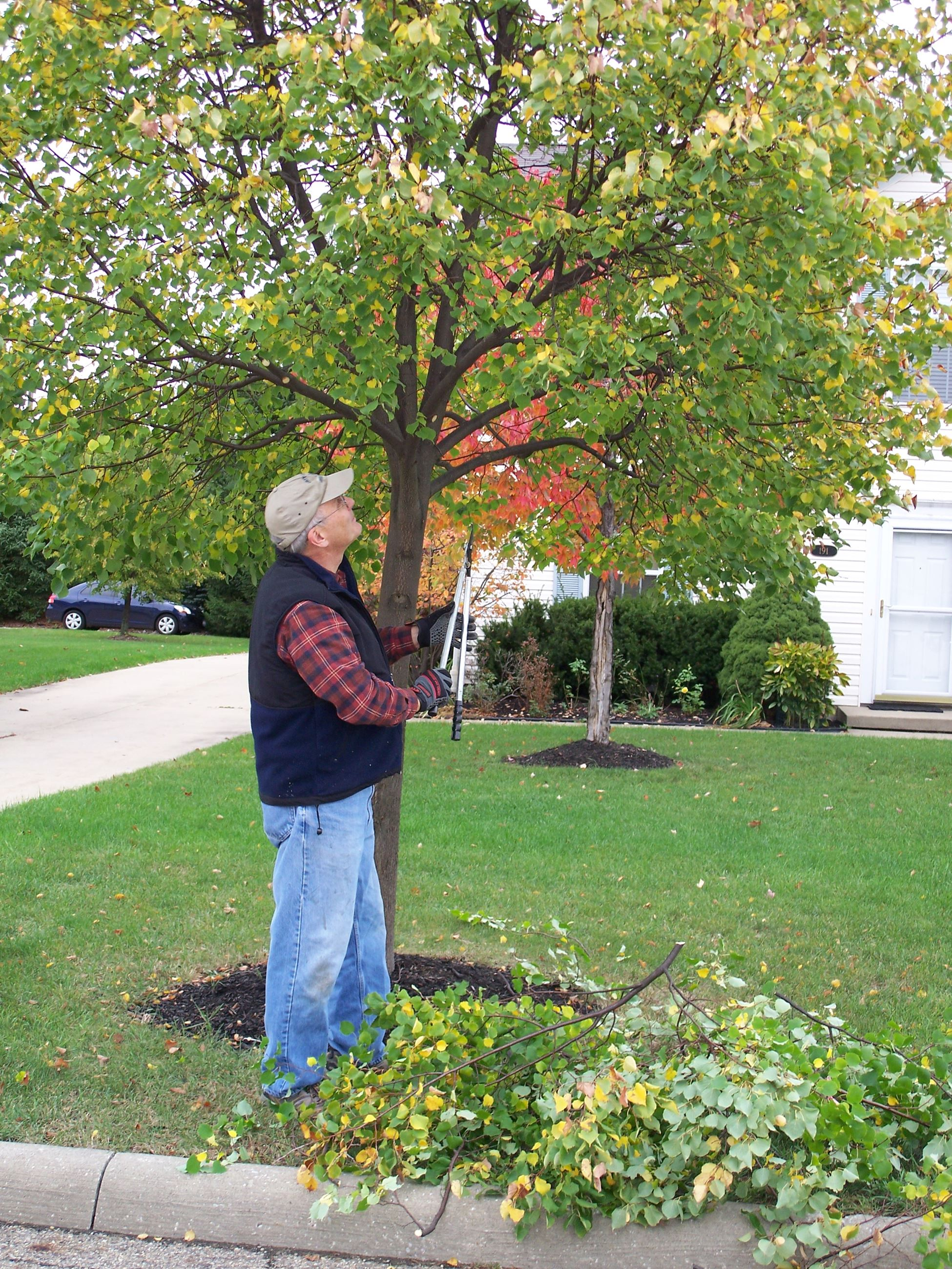 10-24-07 volunteer tree trimmers 006